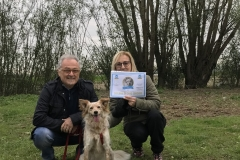 Gaia - diploma di cane educato